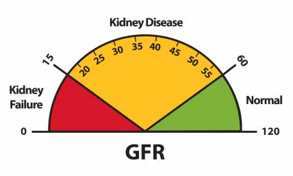 Kidney failure stages, GFR and kidney damage