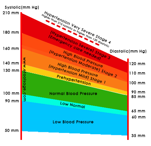 Is There A Women Blood Pressure Chart Healthtopquestions
